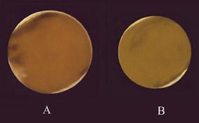 Σχέδια του πλανήτη Άρη (2001) από τον Ιάκωβο Στέλλα