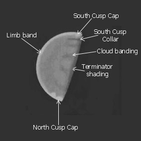 Venus drawing sample features